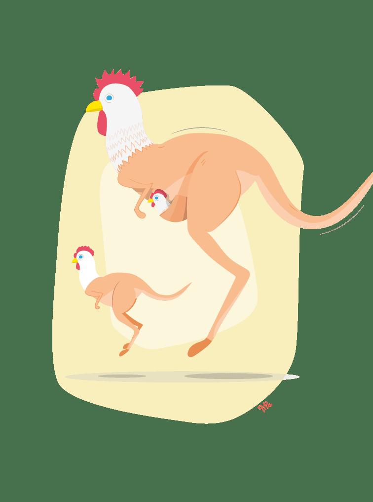 Chickaroo